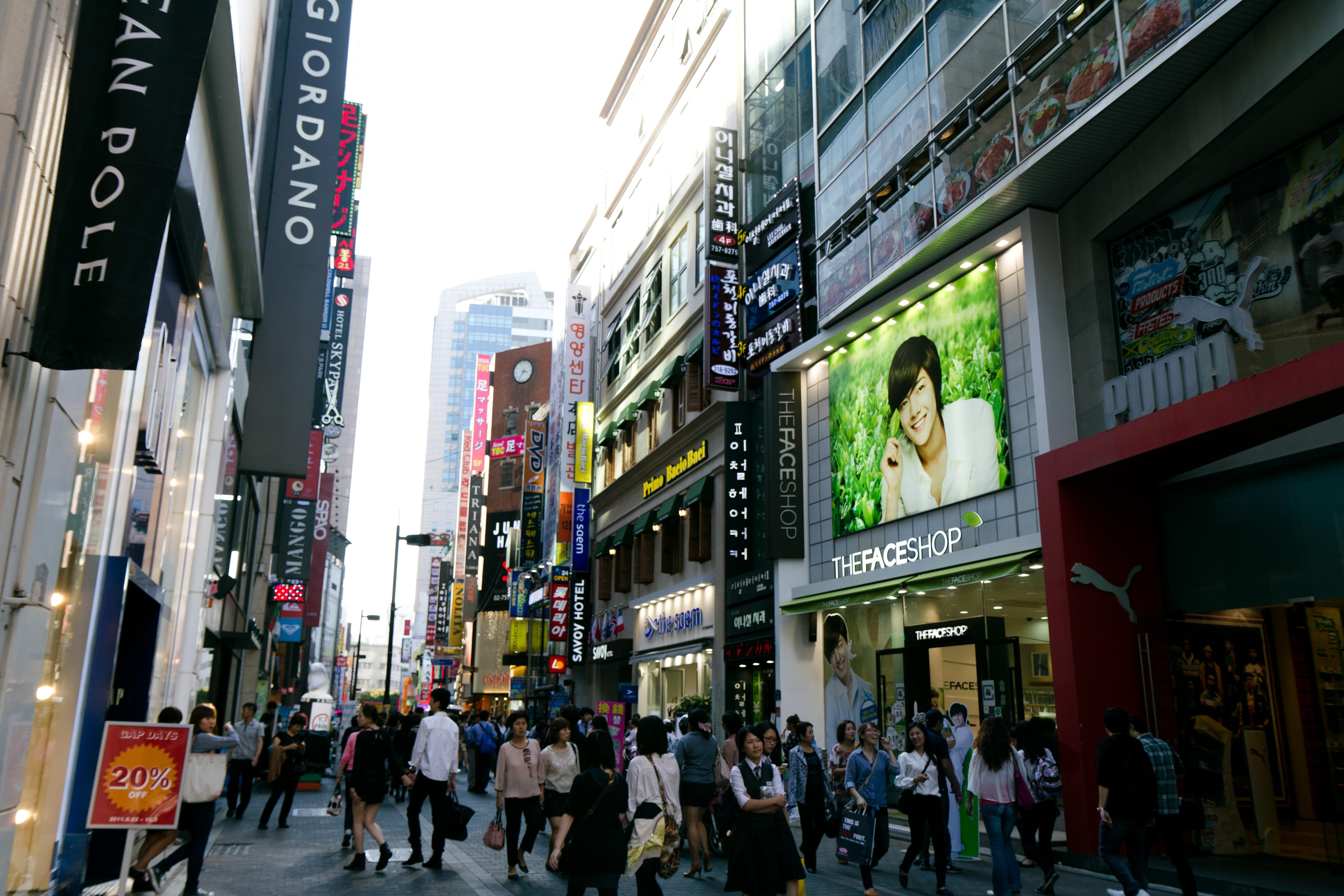paket halal tour korea